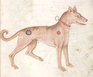 medievalpetnames