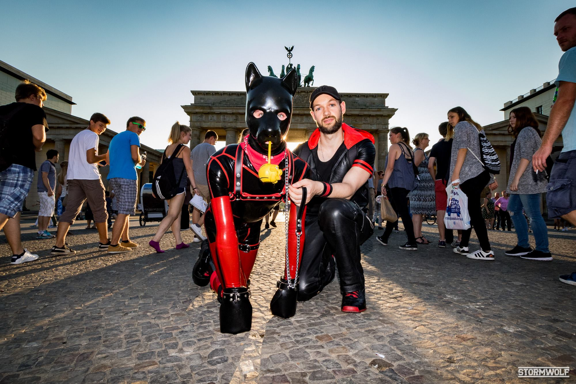 2017 Folsom Puppies: Photo Gallery