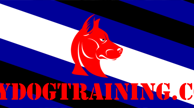 Gaydogtraining Collaboration