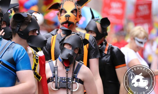 Human Pups at Alpha, Beta, Omega