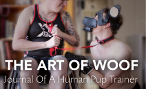 The Art of Woof: Public Pup Play Lessons