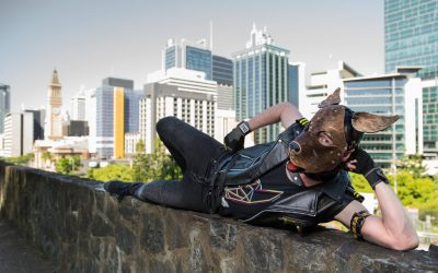 Queensland Pup & Handler Competition 2018 Review
